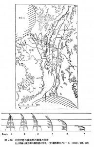 石狩平野の偏形樹